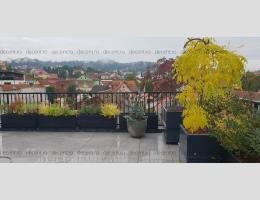 3 camere Premium, Schiller Residence